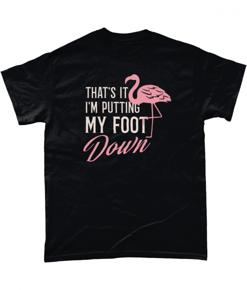 Flamingo T-shirt – That's It I'm Putting My Foot Down
